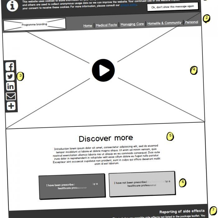 Patient Journey Website preview